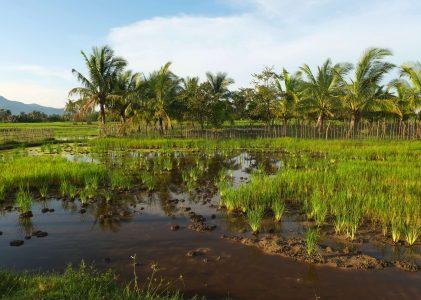 Visiter le Cambodge autrement